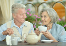 Cute old couple Stock Photography