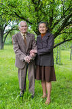 Cute old married couple posing for a portrait in their garden. Love forever concept. Stock Photos