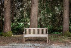 Bench in the forest royalty free stock photos