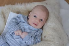 Cute one month baby boy lying stock images