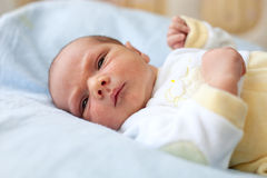 Cute one week old baby boy Royalty Free Stock Photos