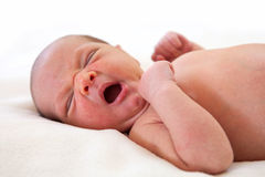 Cute one week old baby boy yawning Royalty Free Stock Photography