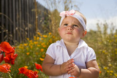 Cute One Year Old And Flowers Royalty Free Stock Photo
