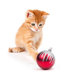 Cute Orange Kitten Playing with a Christmas Ornament on White Royalty Free Stock Photos