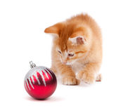 Cute Orange Kitten Playing with a Christmas Ornament on White Royalty Free Stock Photography