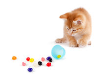Cute Orange Kitten spilling jelly beans out of a plastic Easter Royalty Free Stock Image