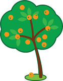 Cute Orange Tree stock images