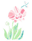 Cute orchid flower royalty free illustration