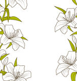 Cute Ornamental Seamless Texture with Lily Flowers Royalty Free Stock Photos