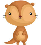 Cute Otter Standing Royalty Free Stock Photo