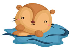 Cute Otter Swimming Stock Photography