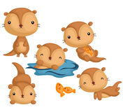 Cute Otter Vector Set Royalty Free Stock Photos