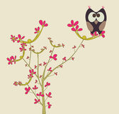 Cute owl. On a branch Royalty Free Stock Photo