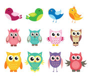 Cute owl and birds set of vector illustration Stock Photography