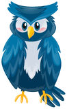 Cute owl with blue feather. Illustration Stock Images