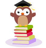Cute owl and books Royalty Free Stock Photo