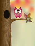 Cute owl on a branch. In autumn Royalty Free Stock Image