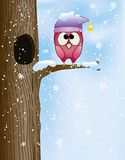 Cute owl on a branch. In winter Royalty Free Stock Photos