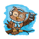 Cute owl on a branch. royalty free illustration