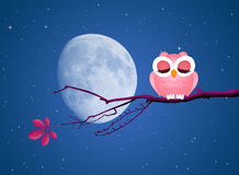 Cute owl on branches in the moonlight. Illustration of cute owl on branches in the moonlight Royalty Free Stock Image