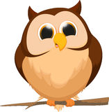 Cute owl cartoon cartoon Royalty Free Stock Photos