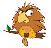 Cute Owl Cartoon Character. Small brown the owl sits on a tree branch royalty free illustration