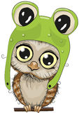 Cute Owl. Cute cartoon owl in a frog hat on a white background Royalty Free Stock Image