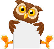 Cute owl cartoon holding blank sign Royalty Free Stock Photo