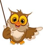Cute owl cartoon holding blank stick Stock Photos