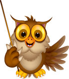 Cute owl cartoon holding blank stick Royalty Free Stock Photos