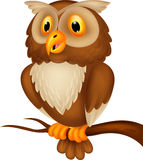 Cute owl cartoon Royalty Free Stock Image