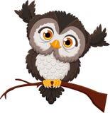 Cute owl cartoon. Illustration of cute owl cartoon royalty free illustration
