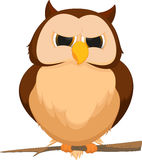 Cute owl cartoon Royalty Free Stock Images