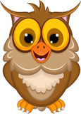 Cute owl cartoon posing Stock Image