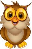 Cute owl cartoon posing Stock Image