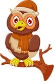 Cute owl cartoon standing on branch. Illustration of cute owl cartoon standing on branch Stock Images