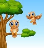 Cute owl cartoon on a tree branch. Illustration of Cute owl cartoon on a tree branch Royalty Free Stock Photos