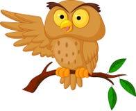 Cute owl cartoon waving Stock Photos