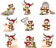 Cute owl christmas cartoon set Stock Images