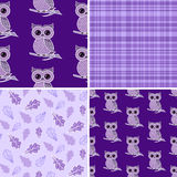 Cute owl on the colorful background. Royalty Free Stock Images