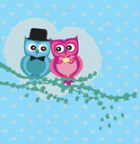 Cute owl couple in love Royalty Free Stock Images