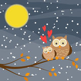 Cute owl couple on a tree. Branch in snow night with full moon background Royalty Free Stock Photo