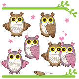Cute owl feminine Royalty Free Stock Image