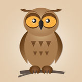 Cute  Owl Stock Photography