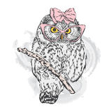 Cute owl with glasses and a bow. Stock Images