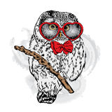 Cute owl with glasses Heart. Valentine`s Day. Royalty Free Stock Photography