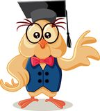 Cute Owl with Graduation Cap Vector Cartoon. Smart bird character graduating school Stock Photos