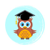 Cute owl with graduation hat. Illustration Stock Images
