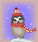 Cute owl in hat and scarf Royalty Free Stock Images