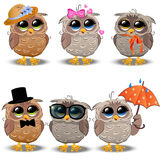 Cute owl in a hat Royalty Free Stock Images